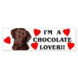 chocolate lab lover Bumper Car Sticker