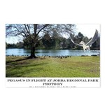 Jorba Pegasus Postcards (Package of 8)