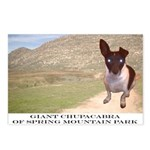 Giant Chupacabra Postcards (Package of 8)