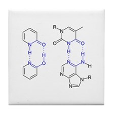 2-Pyridone Chemical Basepair Tile Coaster