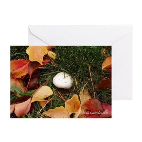 Fall Greeting Cards (Pk of 10)