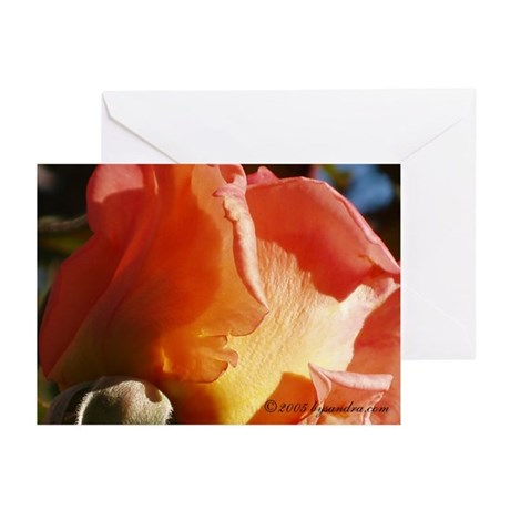 Hot Rose Greeting Cards (Pk of 10)
