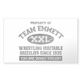 Property of Team Emmett Rectangle Sticker 10 pk)