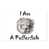 Cute Pufferfish Postcards (Package of 8)