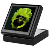 Pansey Keepsake Box