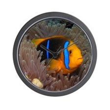 Cute Clown Fish Wall Clock
