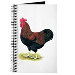 Partridge Rock Rooster Journal