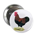 "Partridge Rock Rooster 2.25"" Button (10 pack)"