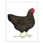 Partridge Rock Hen Small Poster