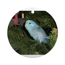 Blue Parrotlet Ornament (Round)