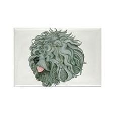 Shaggy Grey Schnoodle Rectangle Magnet