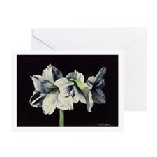 White Amaryllis Greeting Cards (Pk of 10)
