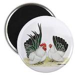 Black-tailed White Japanese B Magnet