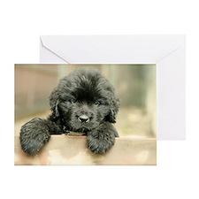 Big Black Dog Greeting Card