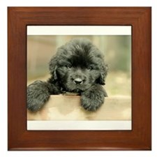Big Black Dog Framed Tile