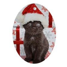 Kitten & Gifts Oval Ornament