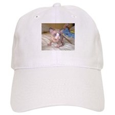 Cute Kitten Baseball Cap