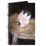 Ringo the Alpaca Journal