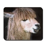 Ringo the Alpaca Mousepad