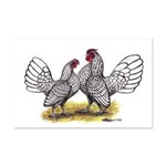 Silver Sebright Bantams Mini Poster Print