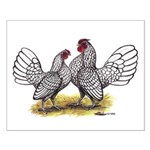 Silver Sebright Bantams Small Poster