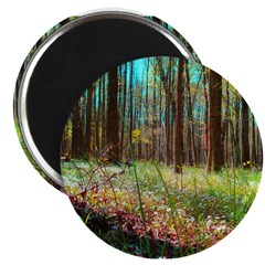 "Photo 2.25"" Magnet (10 pack)"