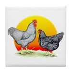 Plymouth Rock Sunrise Tile Coaster
