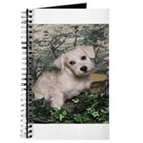 Schnoodle Time Journal