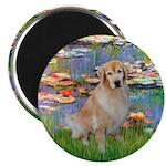 Lililes (#2)-Golden 10 Magnet