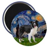 Starry / Border Collie (Z) Magnet