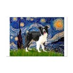 Starry / Border Collie (Z) Mini Poster Print