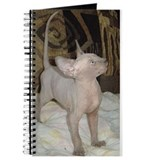 Sphynx cat Journals