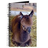 Alpaca Journal