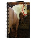 White Horse Journal