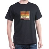 Cute Canyon paintings T-Shirt