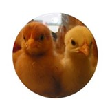 Chicks Ornament (Round)