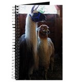 Lama Journal