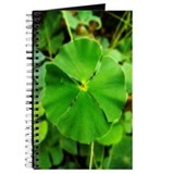 St.Patrick's Journal