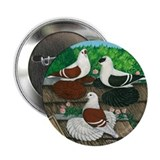 "Saxon Pigeon Trio 2.25"" Button"
