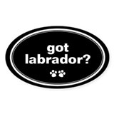 Got Labrador? Oval Decal