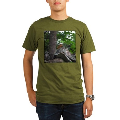 Chipmunk With Nut Organic Men's T-Shirt (dark)