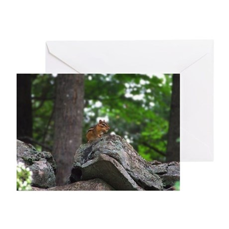 Chipmunk With Nut Greeting Cards (Pk of 20)