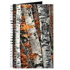 Birch Bark and Foliage Journal