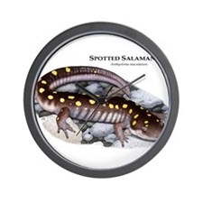 Spotted Salamander Wall Clock