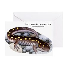 Spotted Salamander Greeting Cards (Pk of 10)