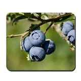 Tasty Blueberry Mousepad