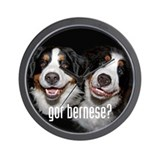 got bernese? Wall Clock