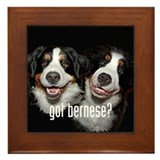 got bernese? Framed Tile