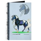 Pinto Arabian Horse Journal