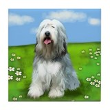 BEARDED COLLIE DOG Tile Coaster